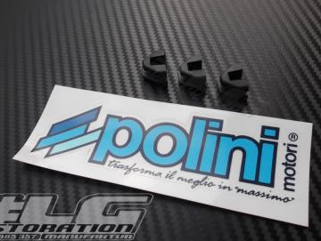 Gleitschuhe für Polini Variomatik